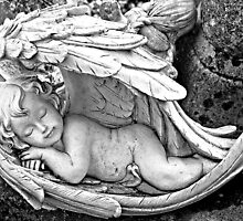 Sleeping Angel by Ethna Gillespie