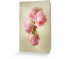 Pink Lace Roses Greeting Card