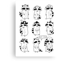 Raccoon Hat Party Canvas Print