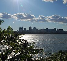 Montreal From a Distance by Jacinthe Brault