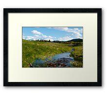 Fresh streams Framed Print