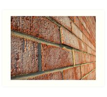 Just Another Brick in the Wall (2) Art Print
