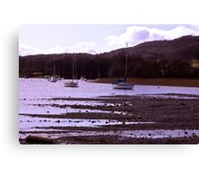 From the Shore Canvas Print