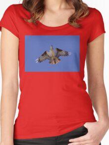 Osprey in Flight Women's Fitted Scoop T-Shirt