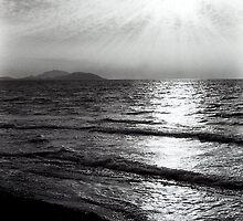 Monochrome by Magdalena  Mirowicz