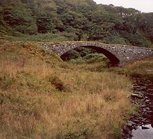 The Rude Bridge at Latheronwheel Harbour by artwhiz47