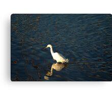 White Crane Canvas Print
