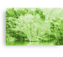 Pond Trees photo painting Canvas Print