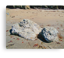 Rocks in the Sand photo painting Canvas Print