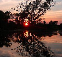 Daybreak Mirror by Trisha Kumar