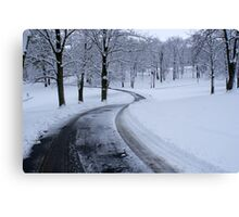 WINTER  WONDERLAND....COLD but beautiful! Canvas Print
