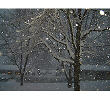 A Snowy Eve Photographic Print