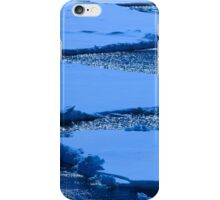 Antarctica 11  iPhone Case/Skin