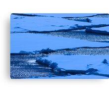 Antarctica 11  Canvas Print