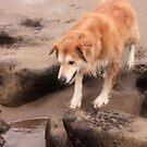 peering in the water by xxnatbxx