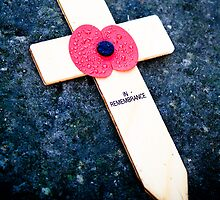 In Remembrance  by Jonathon Wilson