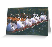 Swan Boats at Sunrise Greeting Card