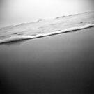 waves through a holga by sara montour
