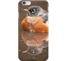 American Robin iPhone Case/Skin