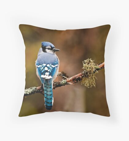 Blue Jay On Branch Throw Pillow