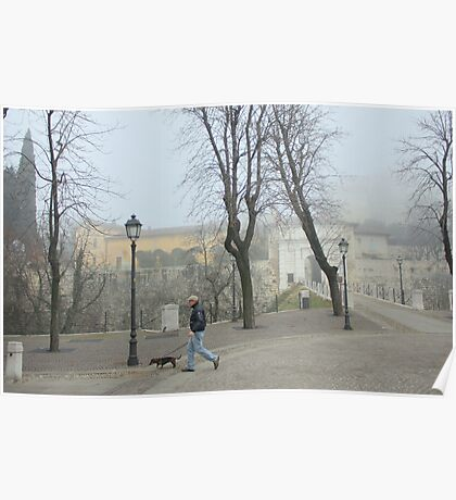 Walking in the fog Poster