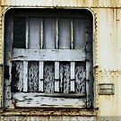 White Train Door by Larry3