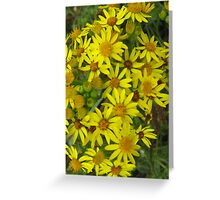 Bright Yellow Flowers Greeting Card