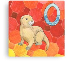 O is for Otter Canvas Print