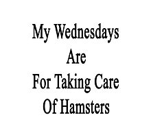 My Wednesdays Are For Taking Care Of Hamsters  Photographic Print