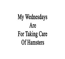 My Wednesdays Are For Taking Care Of Hamsters  by supernova23