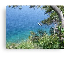 First dive of the season Canvas Print