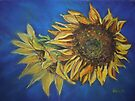 Sunflower Study (pastel) by Dianne  Ilka