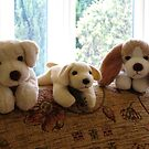 Cute K9 Toys by BlueMoonRose