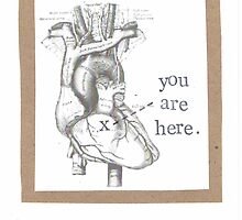 You Are Here Anatomical Heart by bluespecsstudio
