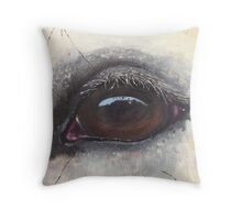 Ballymeeney Castle Throw Pillow