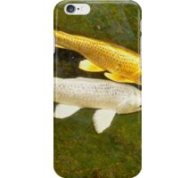 Gold and Silver iPhone Case/Skin