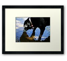 Abbie's Reflection Framed Print