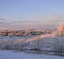 The Morning Frost III by Al Bourassa