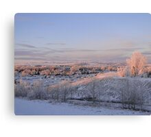 The Morning Frost III Canvas Print