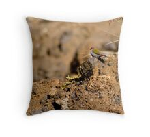 Red-Browed Finch Throw Pillow