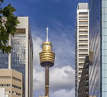 Sydney Tower by Jola Martysz