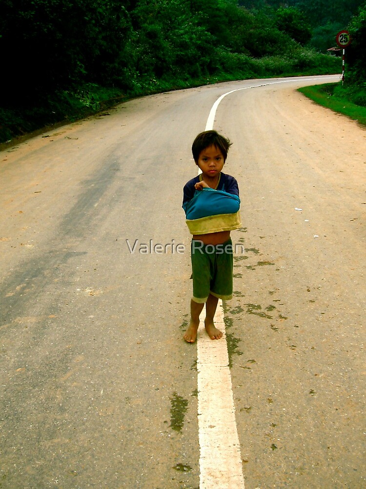 The Road to Poverty by Valerie Rosen