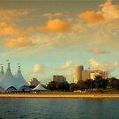 Scenes from Miami VI by PJS15204