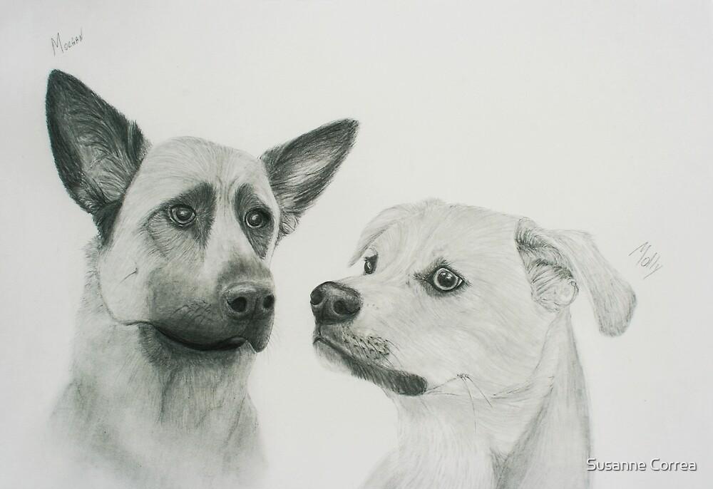 Morgan & Molly by Susanne Correa