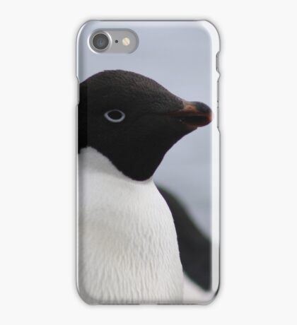 Adelie Penguin Antarctica 1 iPhone Case/Skin