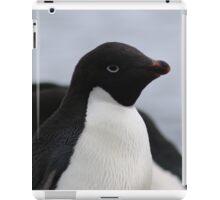 Adelie Penguin Antarctica 1 iPad Case/Skin