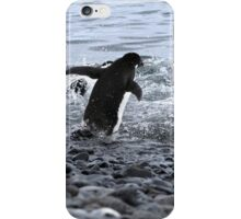 Adelie Penguins Antarctica 2B iPhone Case/Skin
