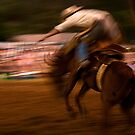 Rodeo Blur by Dianne English