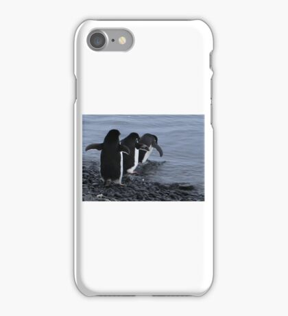ADELIE PENGUINS Antarctica 3 iPhone Case/Skin