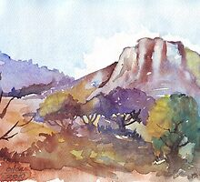 Magaliesberg Mountains 1 by Maree  Clarkson